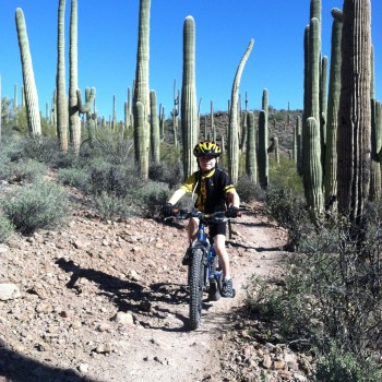 Base road bike miles in Tucson