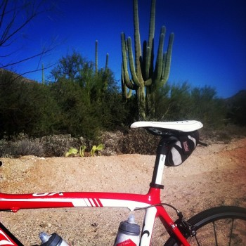 1st week in Tucson: Riding, Christmas trees and meeting Team Garmin