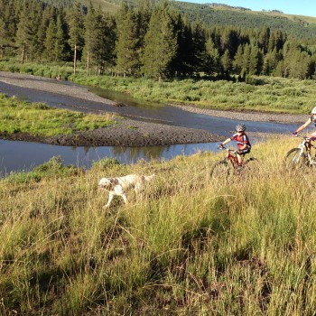 Mountain Bikers: How to win the battle for trail access