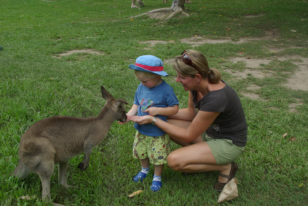 feeding roo-XL