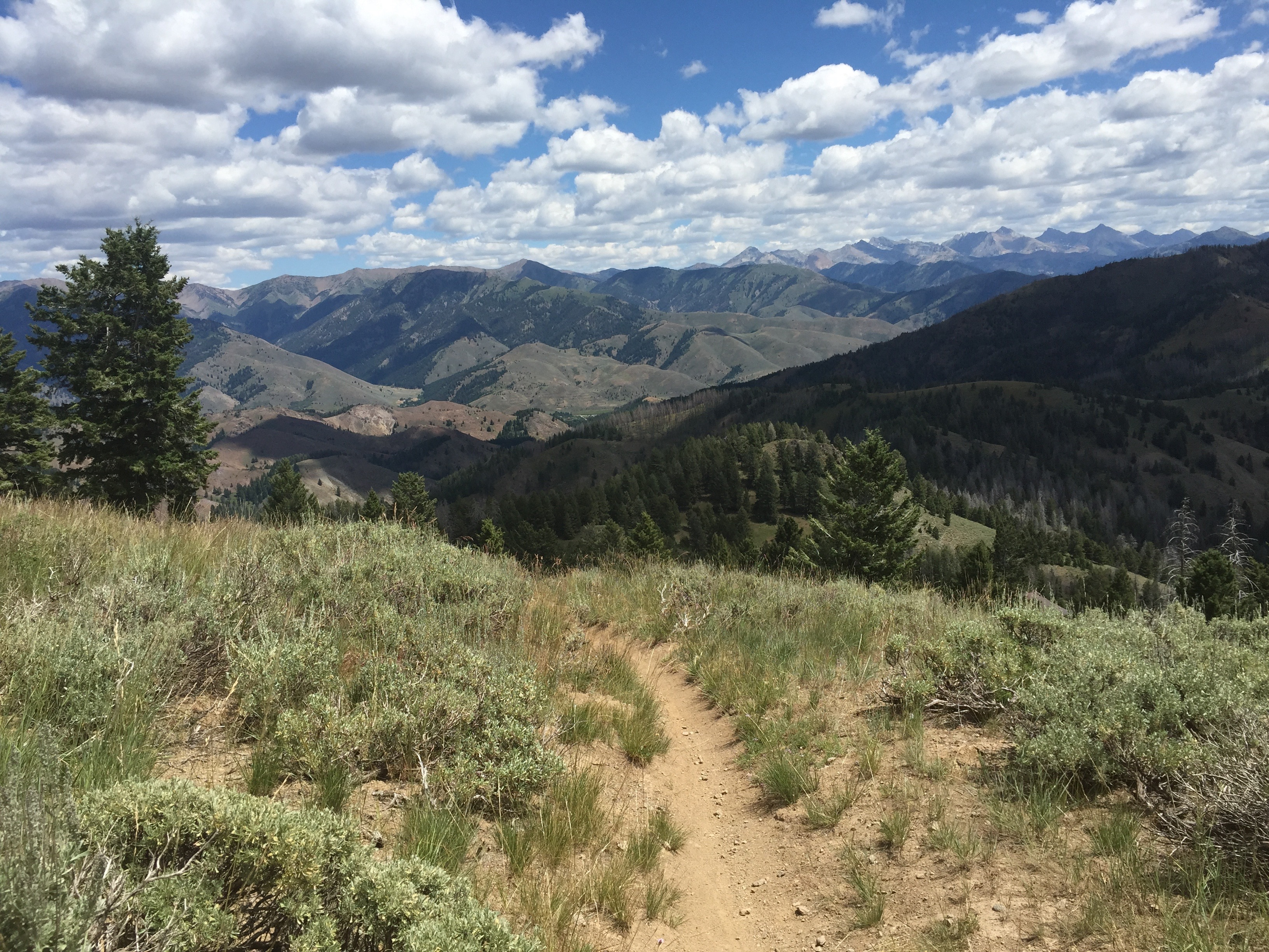 mountain biking, sun valley, trails